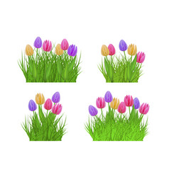 Spring floral bundles of different widths set with vector