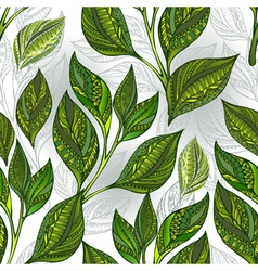 Seamless pattern with green tea leaves vector