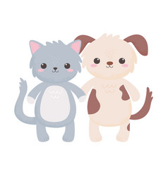 cute little gray cat and doggy cartoon isolated vector image
