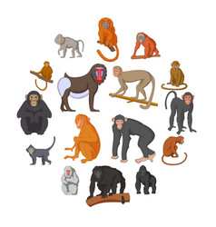 different monkeys icons set cartoon style vector image