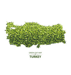 Green leaf map of turkey of a vector