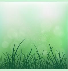 nature grass on blur green bokeh vector image
