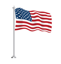 united state america flag vector image