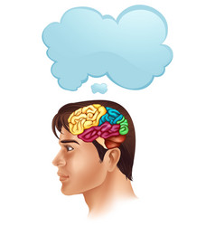 man with brain diagram and speech bubble vector image vector image