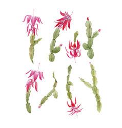 schlumberger cactus set vector image vector image