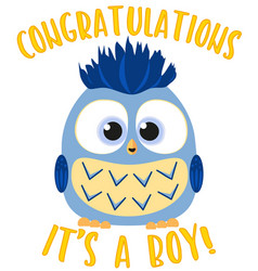 congratulations it s a boy colorful poster vector image