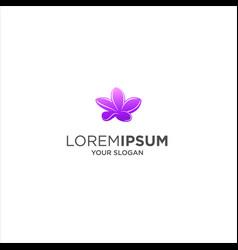 frangipani flower spa logo vector image