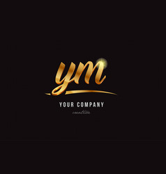Gold alphabet letter ym y m logo combination icon vector