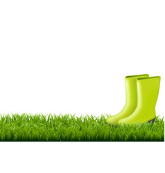 gumboot with green grass border vector image