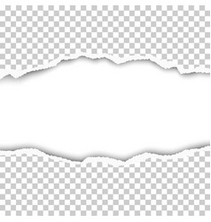snatched middle of transparent paper vector image