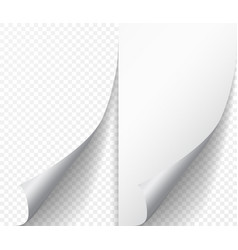White page curl corner on blank sheet of paper vector