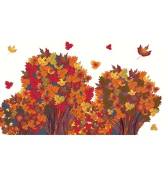 Banner with autumn maple trees vector image vector image