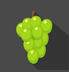 grapes cartoon flat icondark blue background vector image vector image