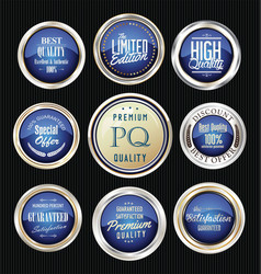 luxury silver and blue design badges and labels vector image