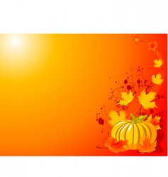 autumn pumpkin background vector image