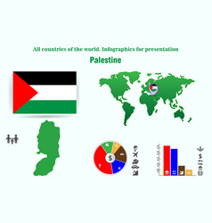 palestine all countries of the world infographics vector image