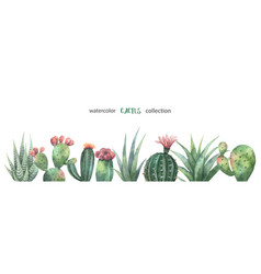 watercolor banner cacti and succulent vector image