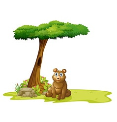 A tree with a hollow at the back of a bear vector image