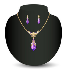 A golden necklace and earrings female with white vector