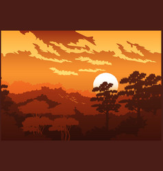beautiful forest at sunset vector image