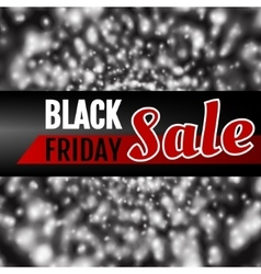 Black Friday Theme vector image