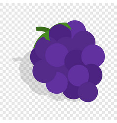 Bunch of blue grapes isometric icon vector