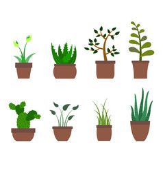 color set with house plants icons vector image