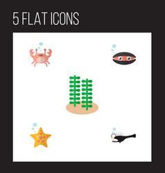 Icon flat sea set of seashell crab anglerfish vector
