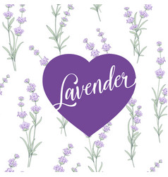 Label of lavender over pattern vector