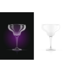Margarita cocktail glass vector
