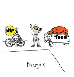 Metaphor function of pharynx to manage traffic vector
