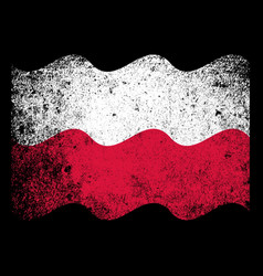 Polish flag grunge vector