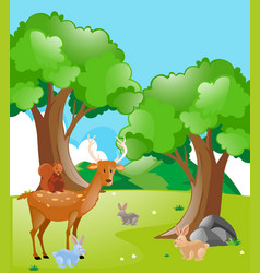 scene with animals in the park vector image