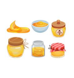 Sugary honey in jars and ceramic bowls set vector