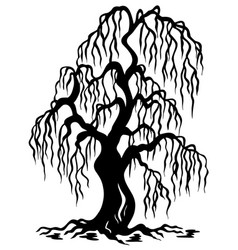 Willow tree silhouette vector