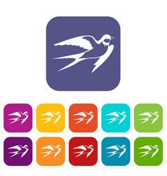 Barn swallow icons set vector