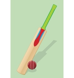 Bat and ball for cricket vector