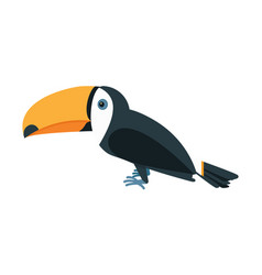 Black toucan with a yellow beak in flat style vector