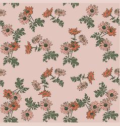 drawing bloom chrysanthemum flowers floral vector image