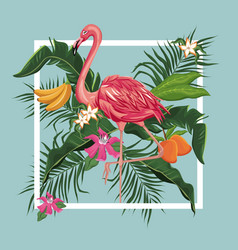 Flamingo bird mango banana leaves exotic tropical vector