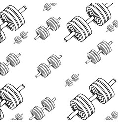 gym and fitness equipment vector image