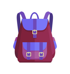 rucksack unisex in purple and blue colors vector image