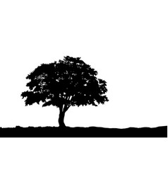 tree on the hill silhouette on vector image