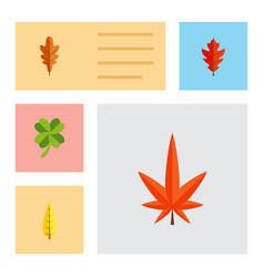 Flat icon maple set of leafage frond aspen and vector