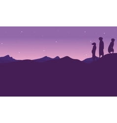 At night meerkat landscape silhouette vector image vector image
