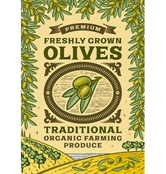 Retro olives poster vector image vector image