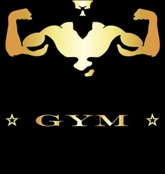 Design for gym and fitness vector