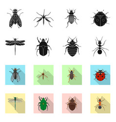 Design of insect and fly logo set of vector