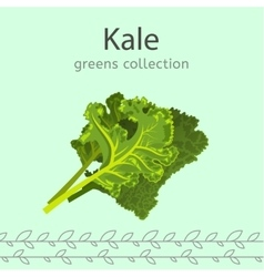 Greens Collection Image vector