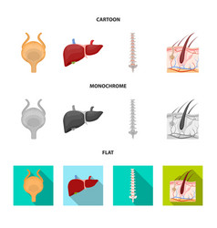 Isolated object of body and human logo set of vector